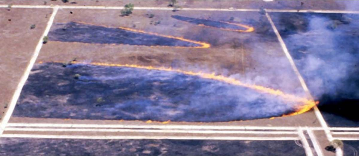 Simultaneously lit grass fires 160 seconds after ignition